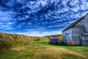 Old barn on the ponderosa by bigdan43