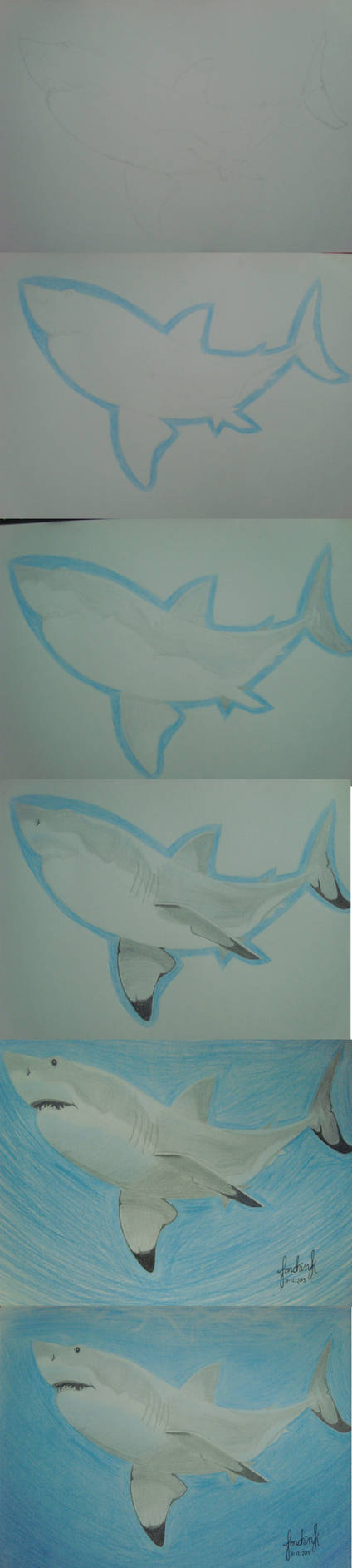 Step To Step Shark