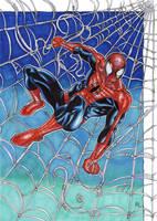 Spider-man and his webs!! by ChrisPapantoniou