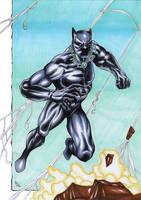 Black Panther in action!!! by ChrisPapantoniou