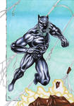 Black Panther in action!!!