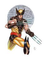 Wolverine!! by ChrisPapantoniou