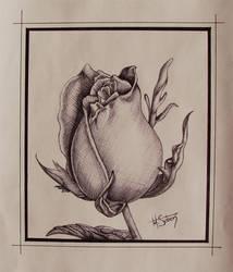 ROSE - for my LOVE by LittleSkull
