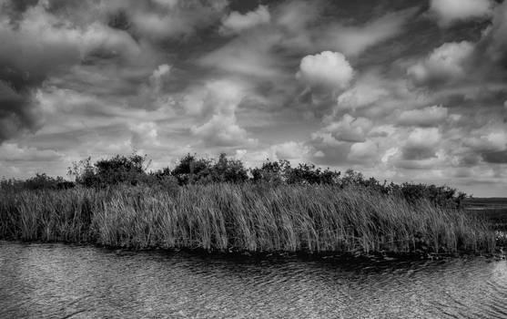 Everglades 1