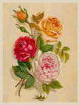 Victorian Floral 1