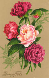 Victorian Floral 2