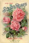 Victorian Floral 4 by Bnspyrd