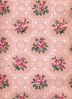 Darling Buds Of May - Rose BG1