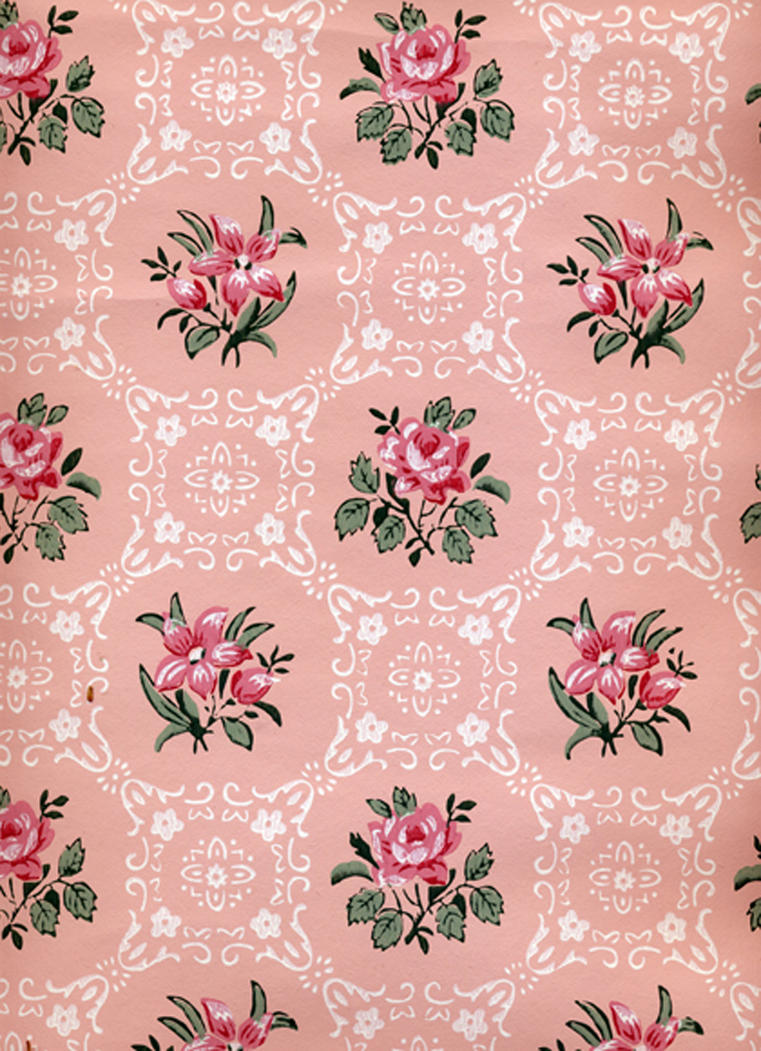 Darling Buds Of May - Rose BG1 by Bnspyrd
