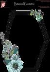 Bnspyrd GeometricFloralBorder-001b