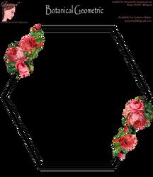 Bnspyrd GeometricFloralBorder-002 by Bnspyrd