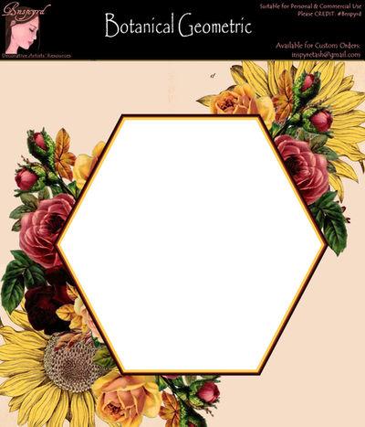 Bnspyrd GeometricFloralBorder-002b