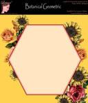 Bnspyrd GeometricFloralBorder-002c