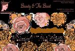 Bnspyrd-Splash Beauty-And-The-Beast- by Bnspyrd