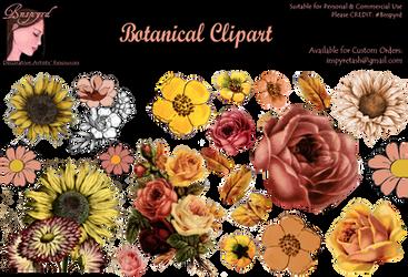Bnspyrd-Clipart-BotanicalGeometric by Bnspyrd