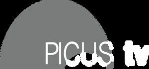 Deus Ex Human Revolution Picus TV Logo