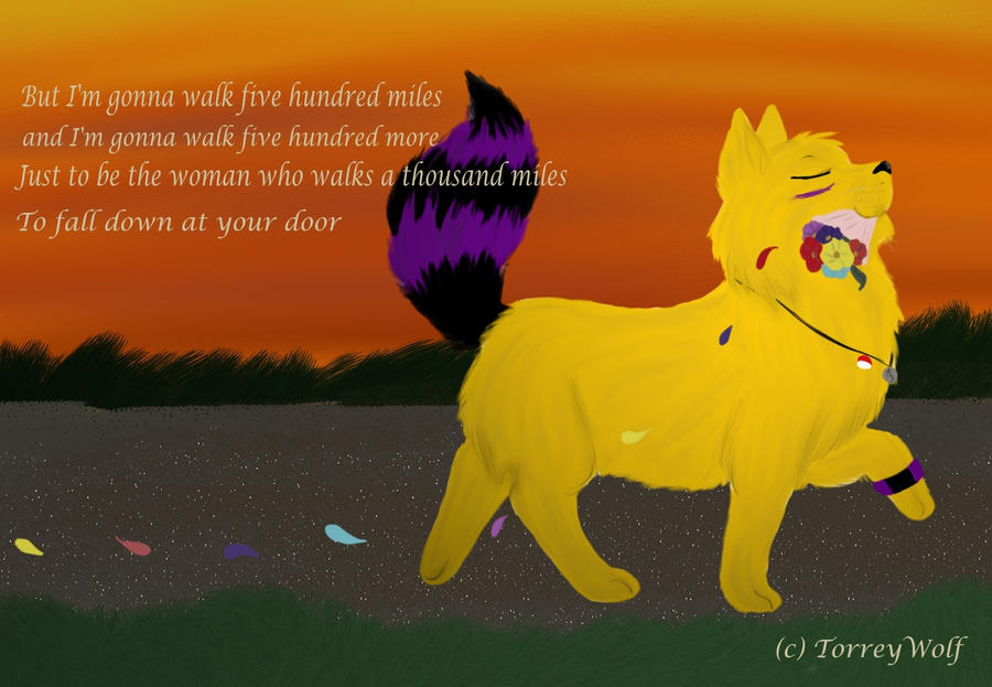 Five Hundred Miles by TorreyWolf