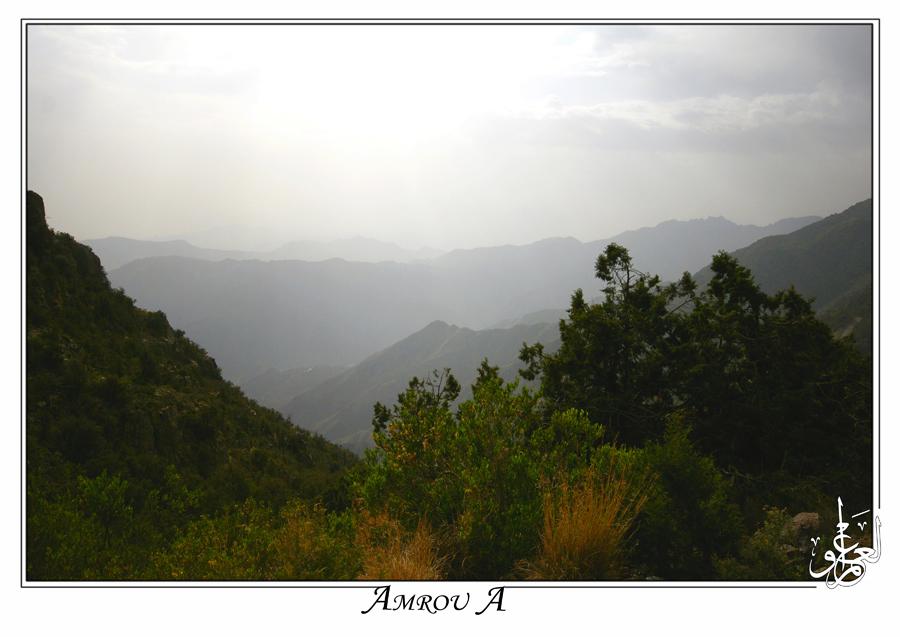 Abha by AMROU-A