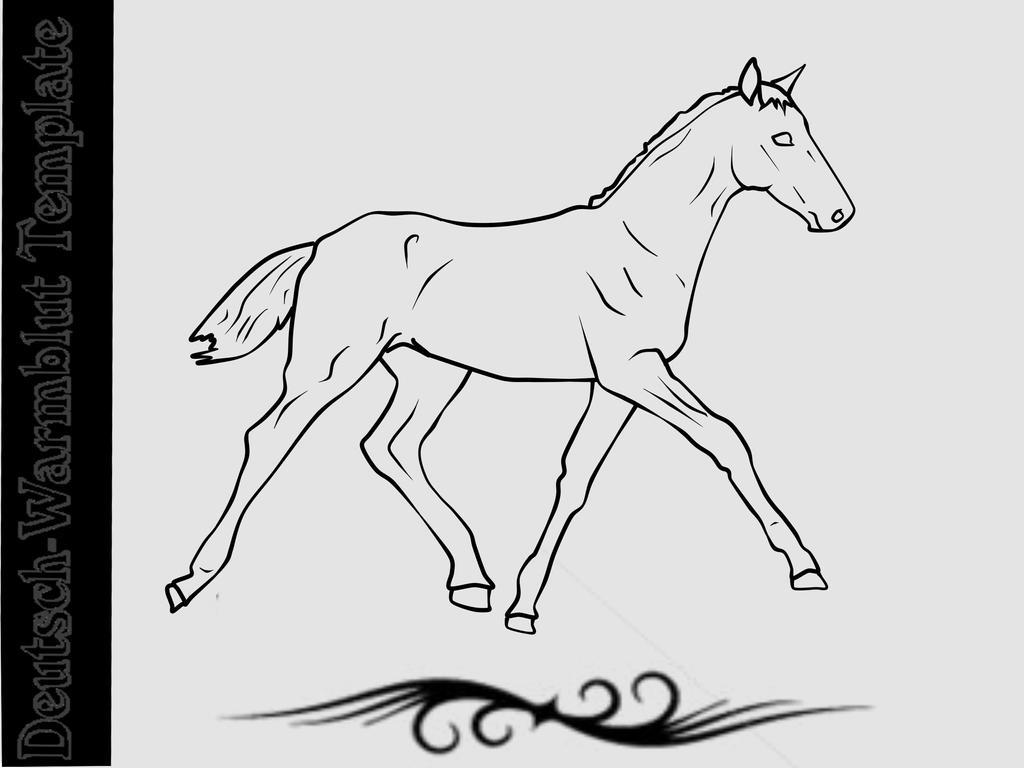 foal deutsch