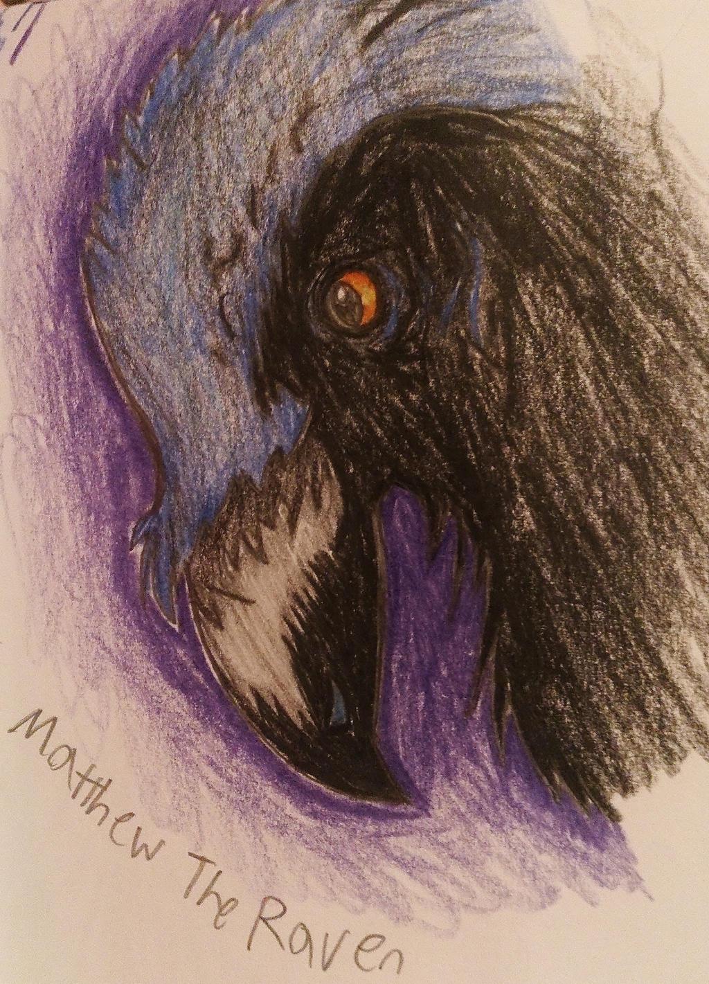 Matthew~ by AutobotChrome
