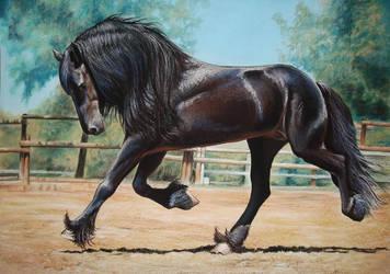 Friesian horse by PASTELIZATOR