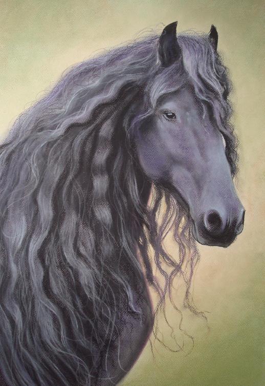 Horse Portrait Friesian Pastel by PASTELIZATOR