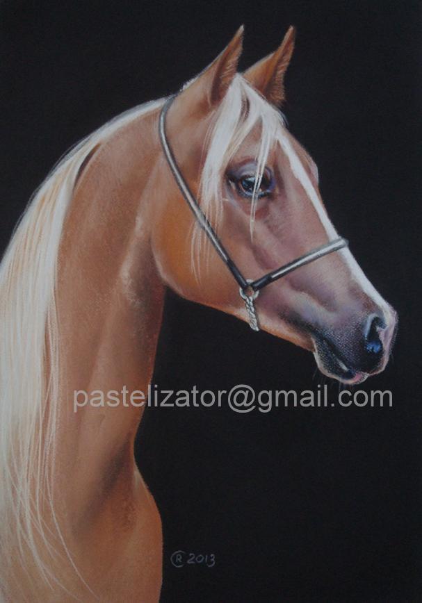 Horse Arabian Portrait Pastel by PASTELIZATOR