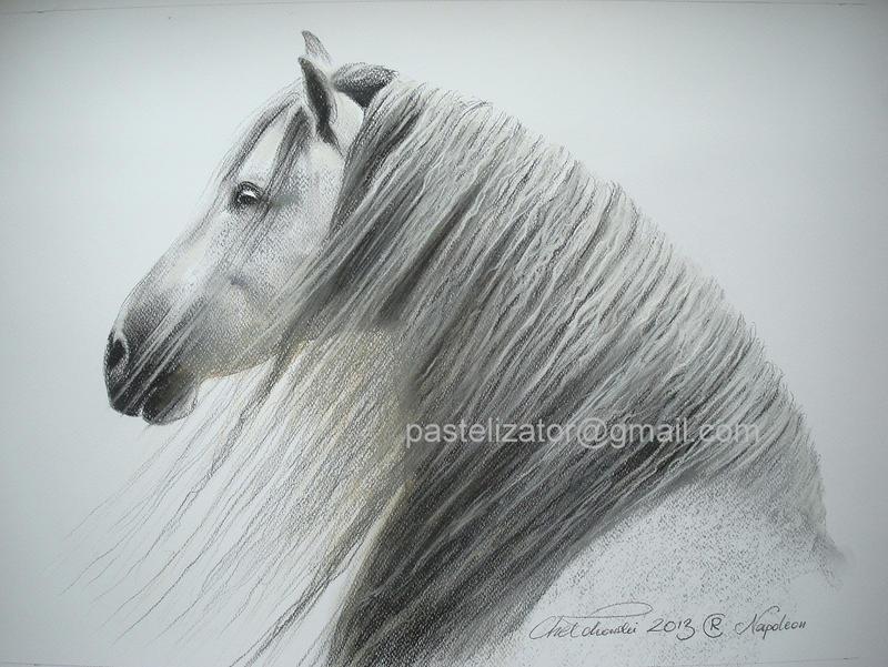 Horse Pastel White Napoleon by PASTELIZATOR