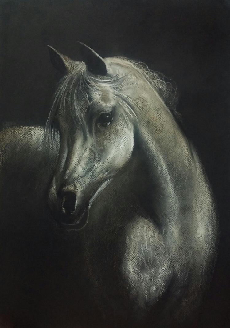 Arabian by PASTELIZATOR