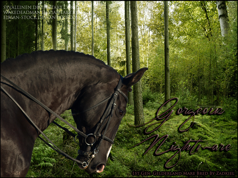 Gorgeous Nightmare - for Zad on HP by syvallinen