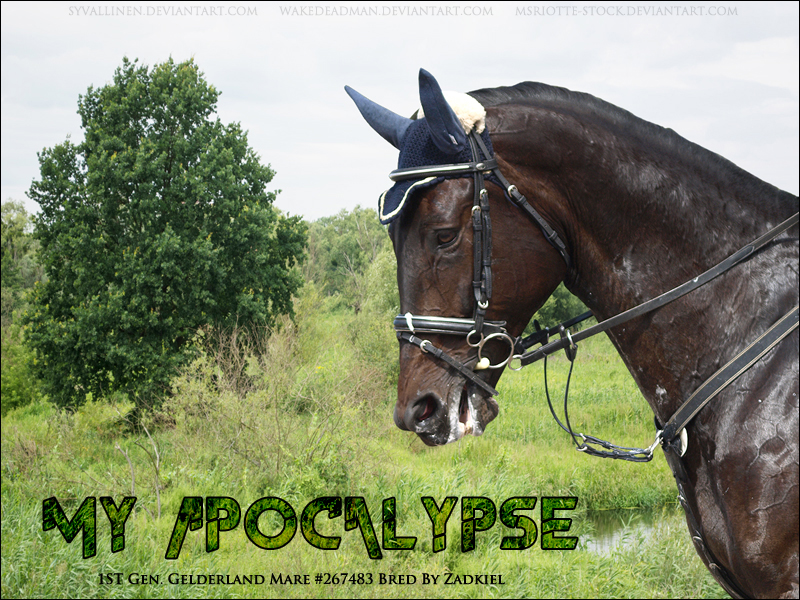 My Apocalypse - for Zad on HP by syvallinen