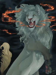 Pheonix lion , the ashen heart