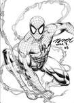 Spider-Man inked version