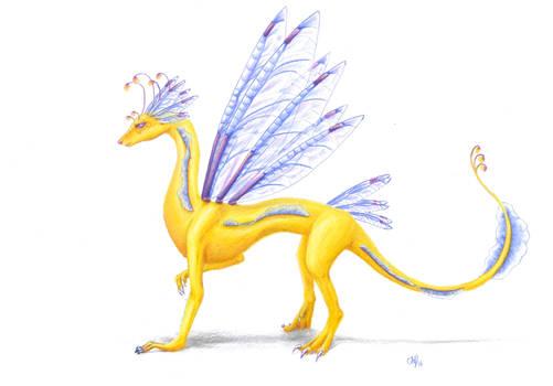 Xia the Fairy Dragon