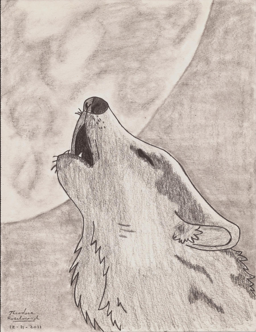 This is a picture of Fabulous Drawing Of A Wolf Howling At The Moon