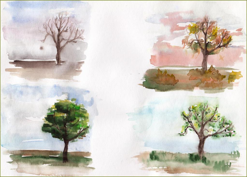 Seasons by Miso-san