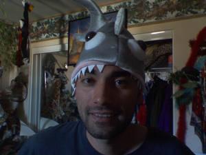 A Shark... Num Num Num
