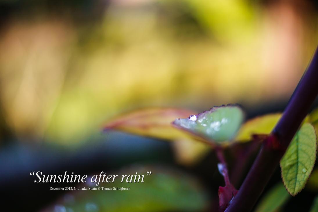 Sunshine after rain, Alhambra, Granada, Spain by Tiemen-S