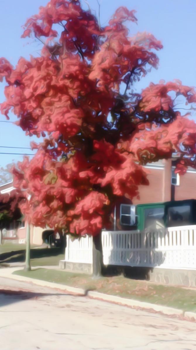 The Red Tree II by kreedantillesordo