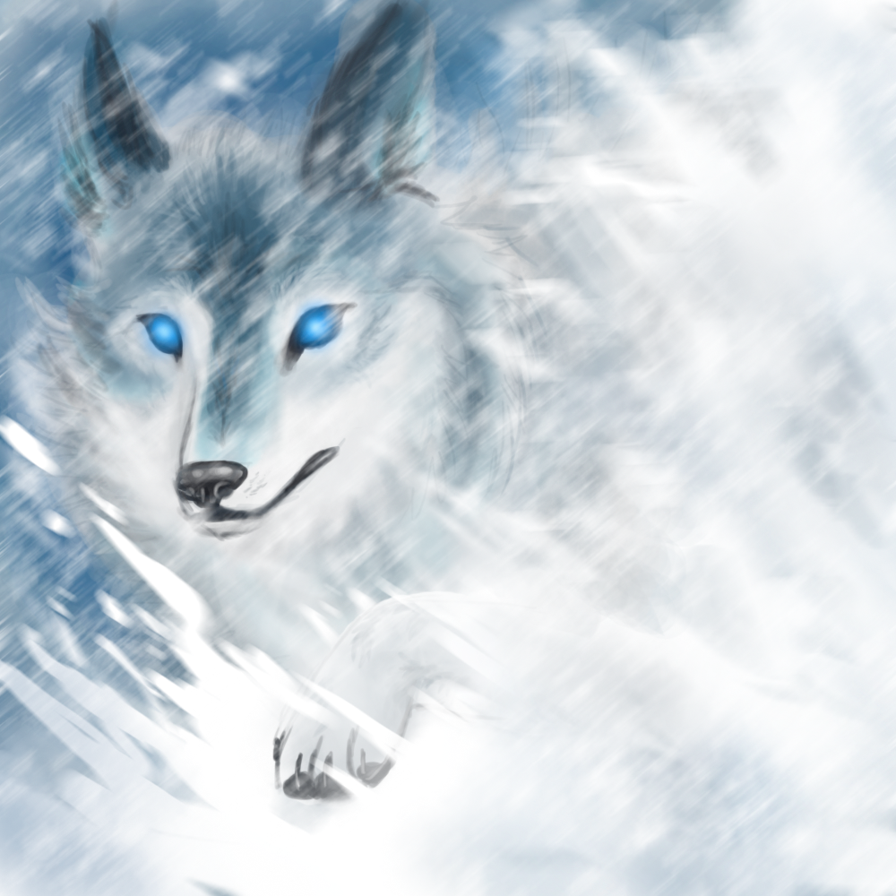 Snow Wolf by KT-245 on DeviantArt