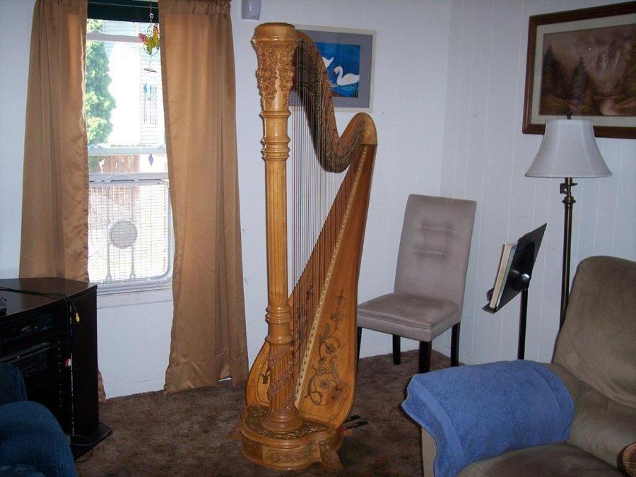 Gilligan, my Venus Harp by OwossoHarpist