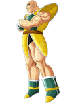 Nappa U-13 Colored