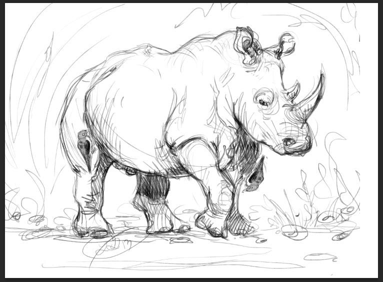 How To Draw White Rhinoceros
