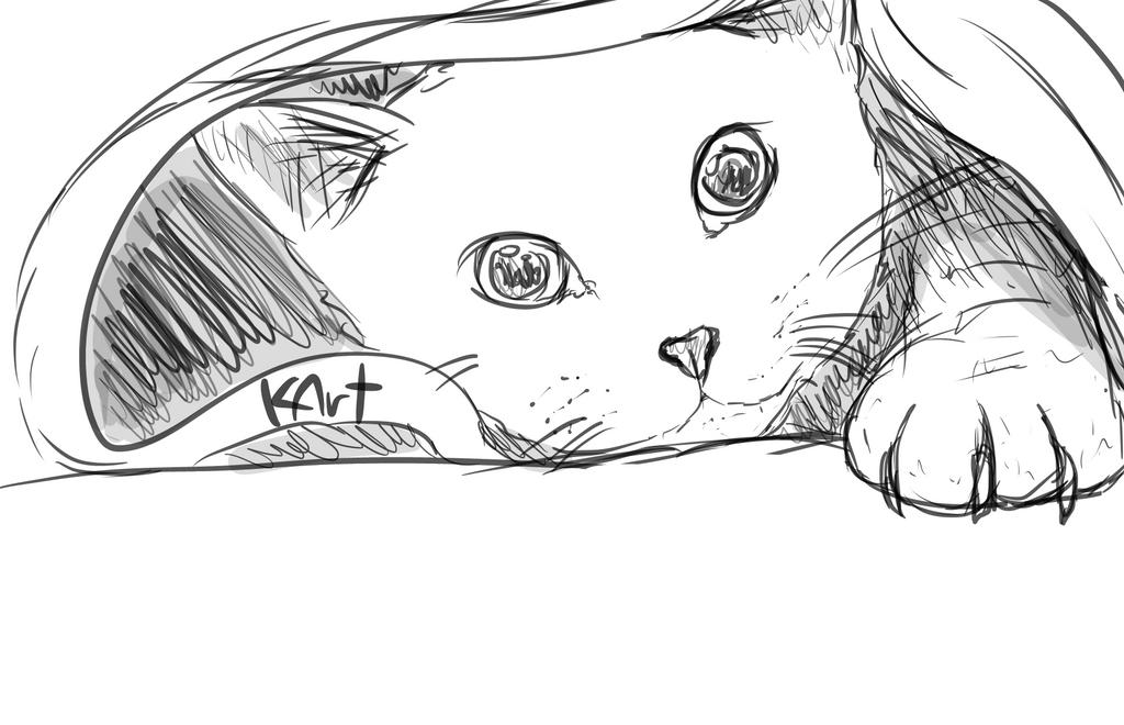 cat sketch2 by KlaudynkaArt