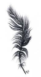 Feather - inktober 2018 by GersifGalsana