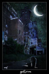 night of moon by He-Manim