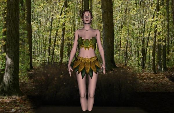 Woodland Fairy Scene b...