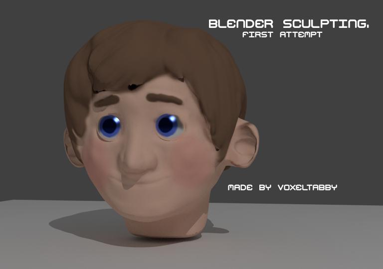 Blender Sculpting, First Success by VoxelTabby on DeviantArt