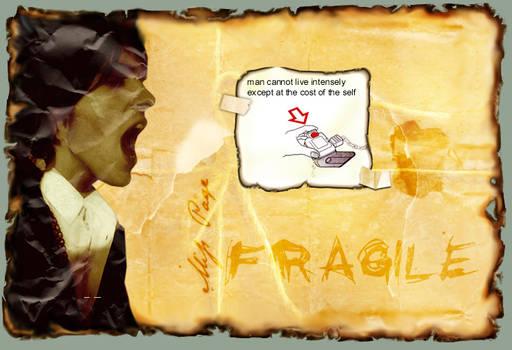 fragile - steppenwolf 003