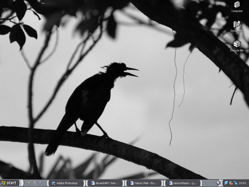 boheme desktop 02